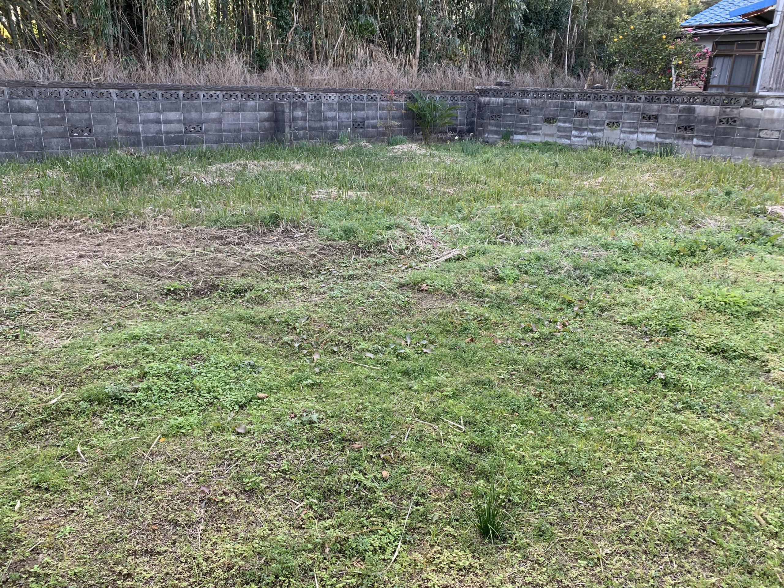 現地写真 ※植栽・ブロック塀の一部は撤去致します。